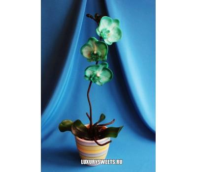 Орхидея в горшочке из мыла ручной работы Латина