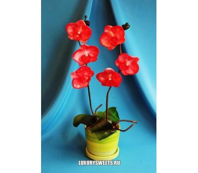 Орхидея в горшочке из мыла ручной работы Пасодобль