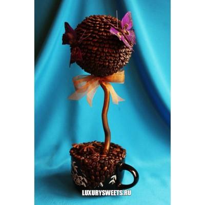 Топиарий из кофе Чёрная жемчужина